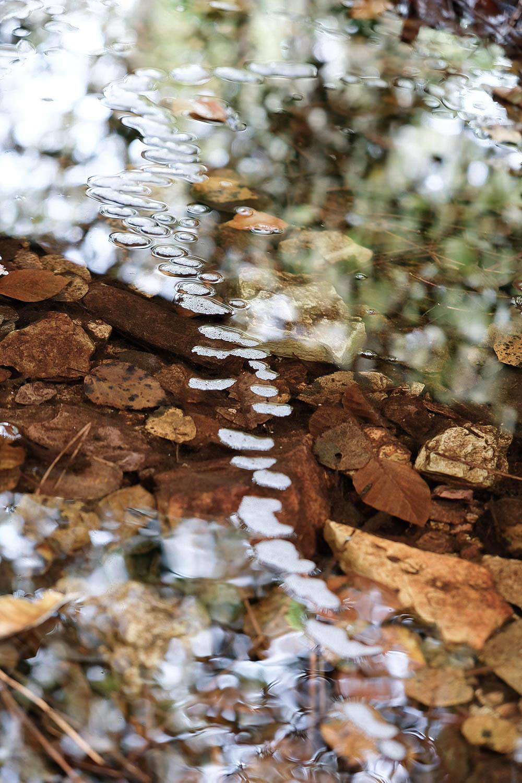 Chemin d'eau, Brocéliande